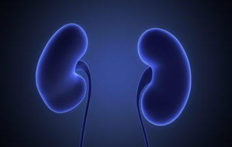 Kidney Transplantation Treatment Guide