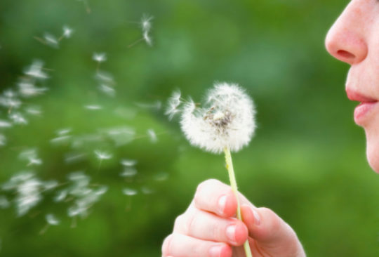 What Can I do to Reduce Airborne Allergens?