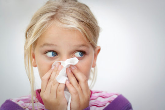 Allergies Or Just A Common Cold?