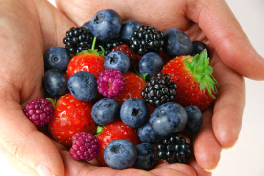 Eating to Sharpen Your Mind: The top foods to increase focus and mental health